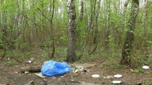basura bosque bolsa