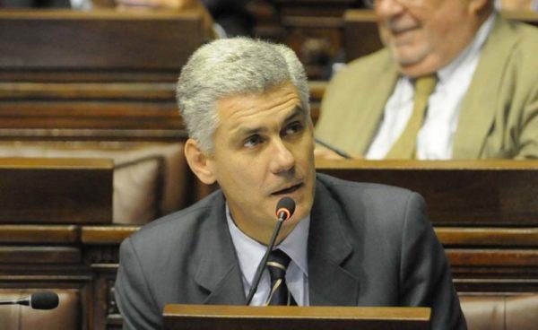 Diputado Rodrigo Goñi